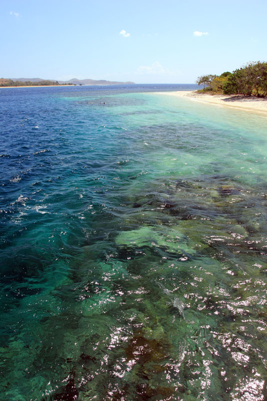 perbedaan warna laut yang berpasir dengan yang berterumbu karang