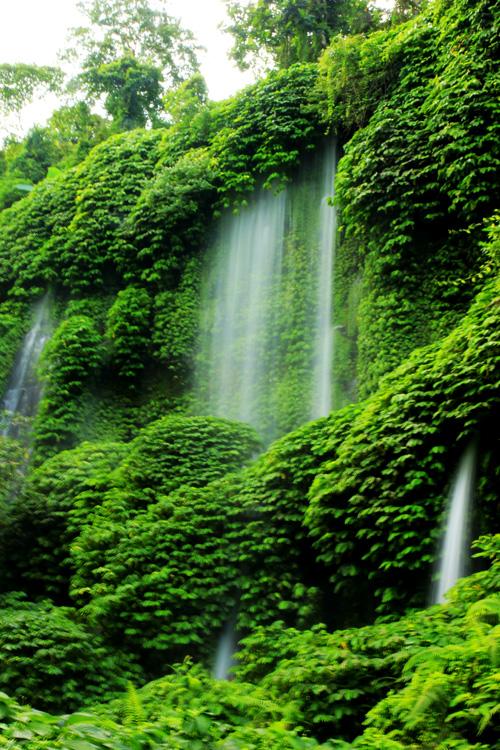Air Terjun Benang Kelambu yang dengan daun-daun hijau, menenangkan