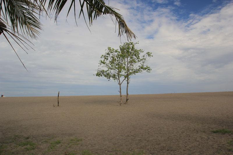 Sendiri di pantai meninting