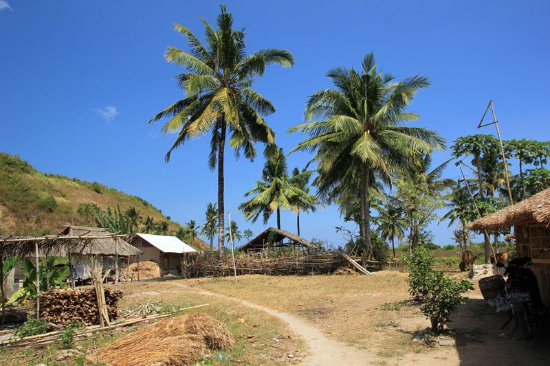 Kampung Tomang Omang