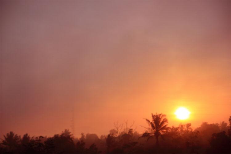 menyeruput kopi flores memandangi sunset dari Hotel Gajah Mada