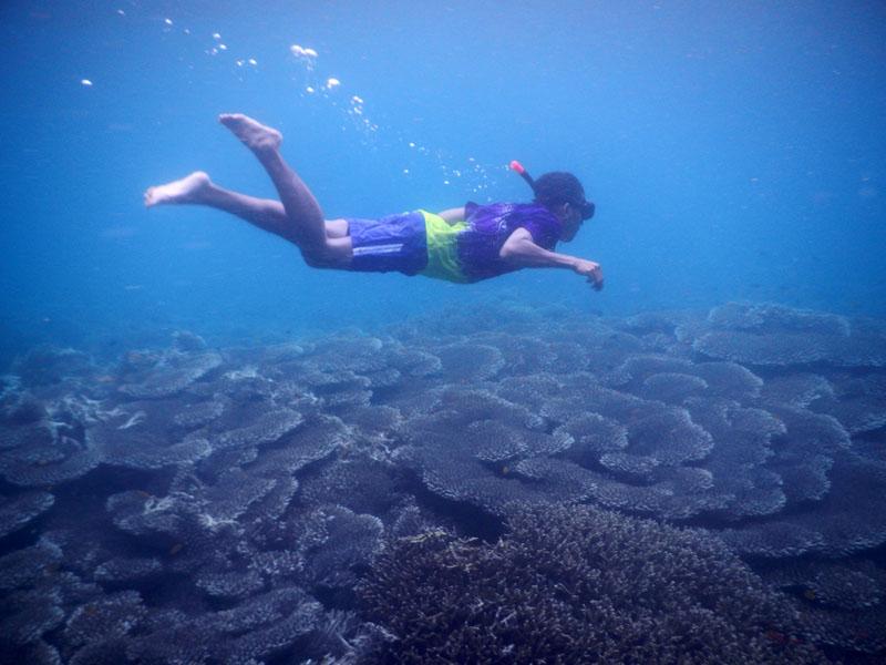 Ardi melakukan free diving