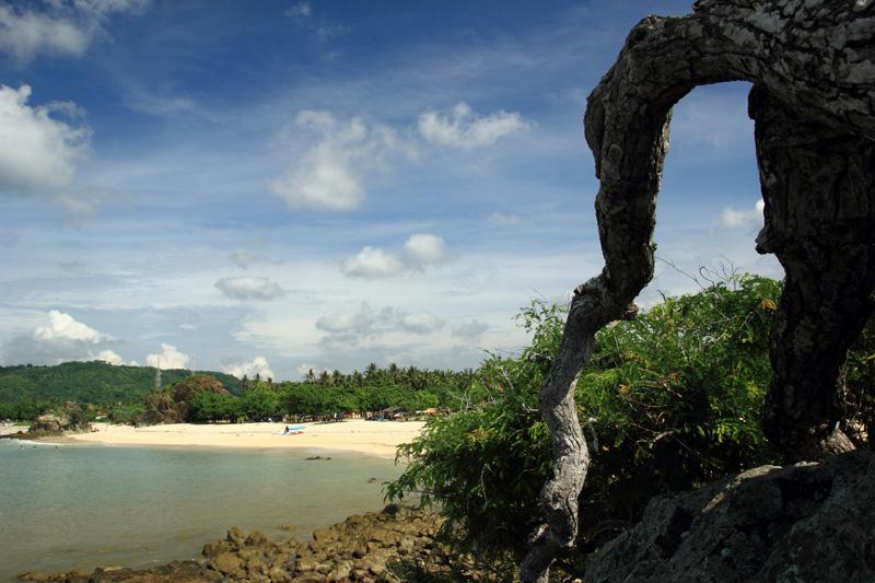 Pantai Kuta dibalik pohon asam