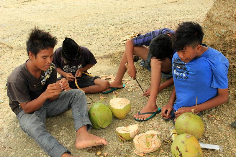 empat sekawan penjual kelapa muda