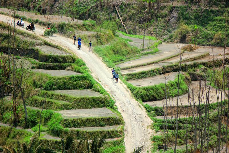 Jalan menuju dusun Bales, Pandansari