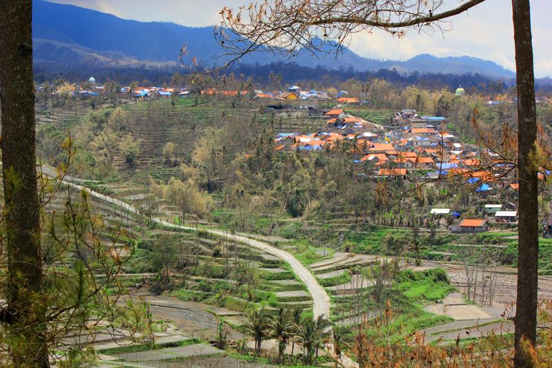 Desa Pandansari dilihat dari sisi waduk selorejo