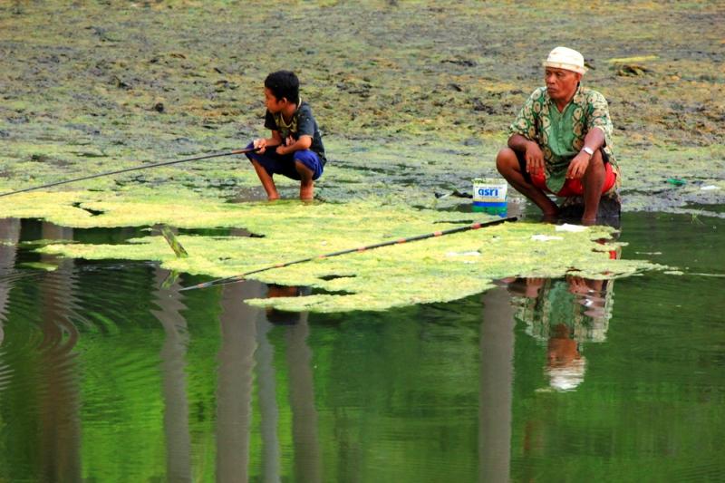 Memacning di sungai lumut